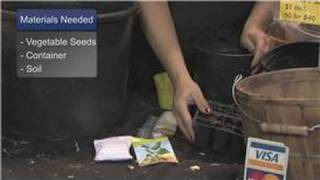 Gardening Tips : How to Start Vegetables From Seeds Indoors