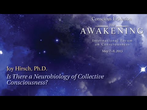Is There a Neurobiology of Collective Consciousness? - Joy Hirsch, Ph.D.