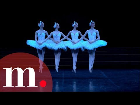 Swan Lake, Tchaikovsky - Dance of the Little Swans from YouTube · Duration:  2 minutes 15 seconds