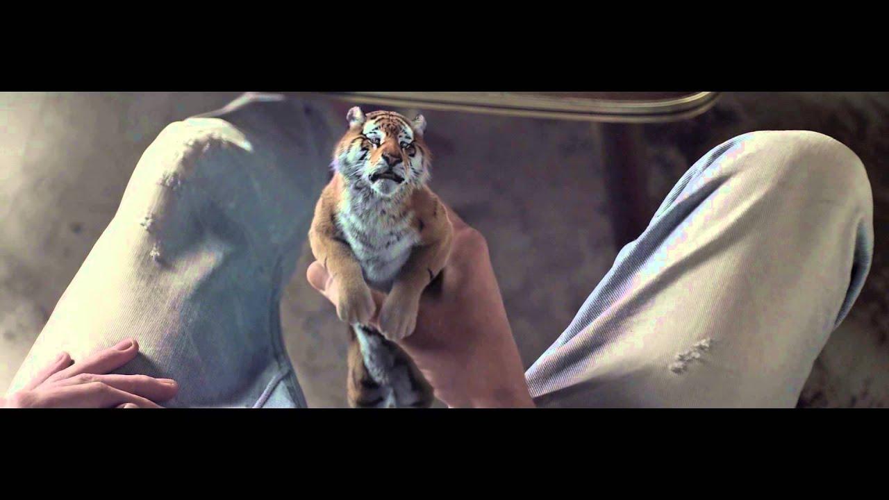 czy tygrysy mają dużego penisa cholernie duże piersi