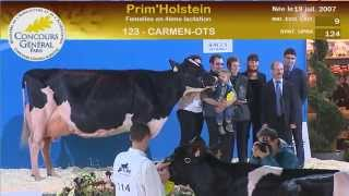 Concours race Prim'Holstein (6/6)
