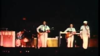THE BEACH BOYS   1966   God Only Knows   YouTube