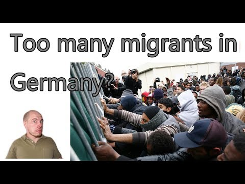 Are there too many migrants in Germany? 1/4 of the population are migrants...