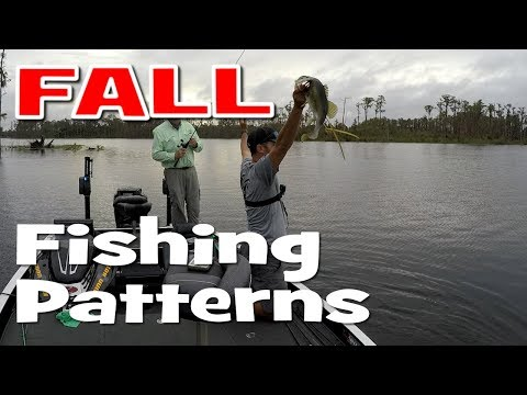 Catching Florida Bass in Windy Fall  Conditions - Jerk Baits & Spinner Baits