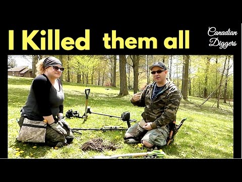 We Shouldn't do this anymore. Metal Detecting 2017 Canadian Diggers