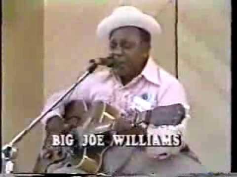 Big Joe Williams ,/ Mississippi Delta Blues Fes 1980