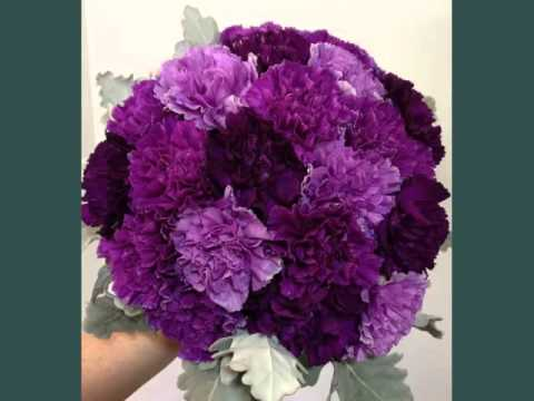 Picture Combination Of Beautiful And Lovely Flowers Purple Carnation Bouquet Wedding