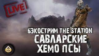 Бэкострим The Station - Савларские хемо-псы