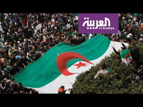 المادة 102 .. طوق نجاة دستوري للجزائر من أزمتها  - نشر قبل 2 ساعة