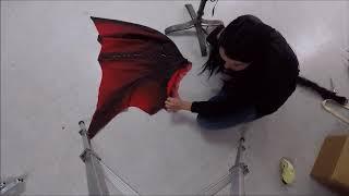 Dragon Wings/Single Pivot Overview
