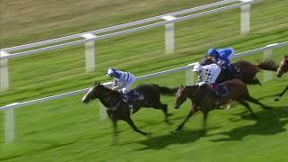 prince of waless stakes 2018 racing uk