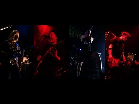 ANGRY FROG REBIRTH - Funky(Live Ver.)