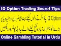 iq option live trade forex and binnay live trade 100% real ...