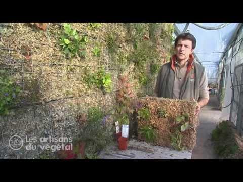 Mur v g tal en palette funnydog tv for Comment faire un mur vegetal