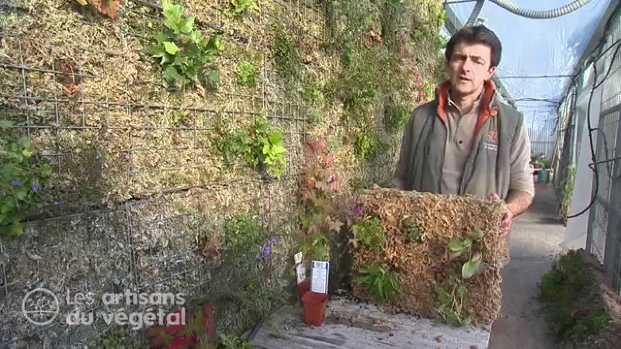 Comment faire un mur v g tal youtube - Fabriquer mur vegetal ...