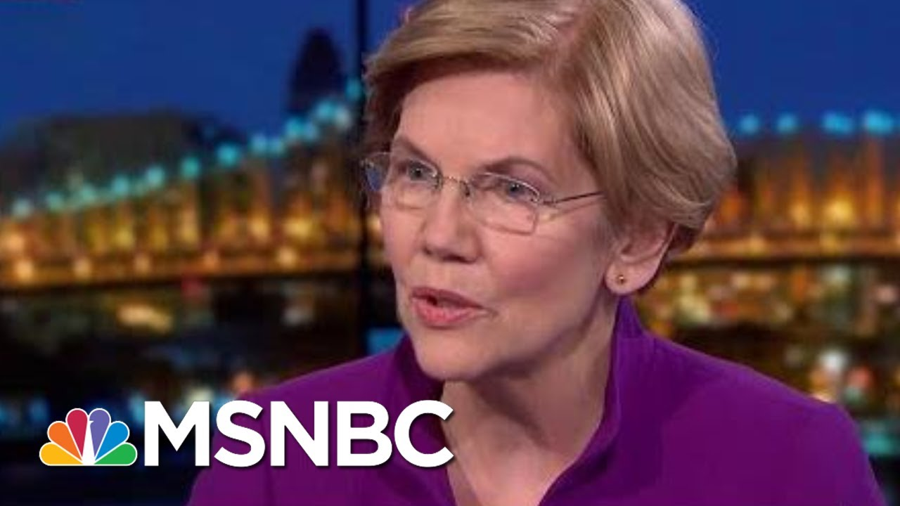 Elizabeth Warren: 'No To The Billionaires' Funding Politics | Rachel Maddow | MSNBC