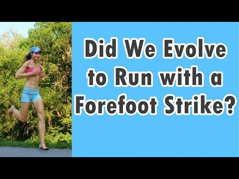 why-humans-may-have-evolved-to-run-with-a-forefoot-strike,-not-a-heel-strike