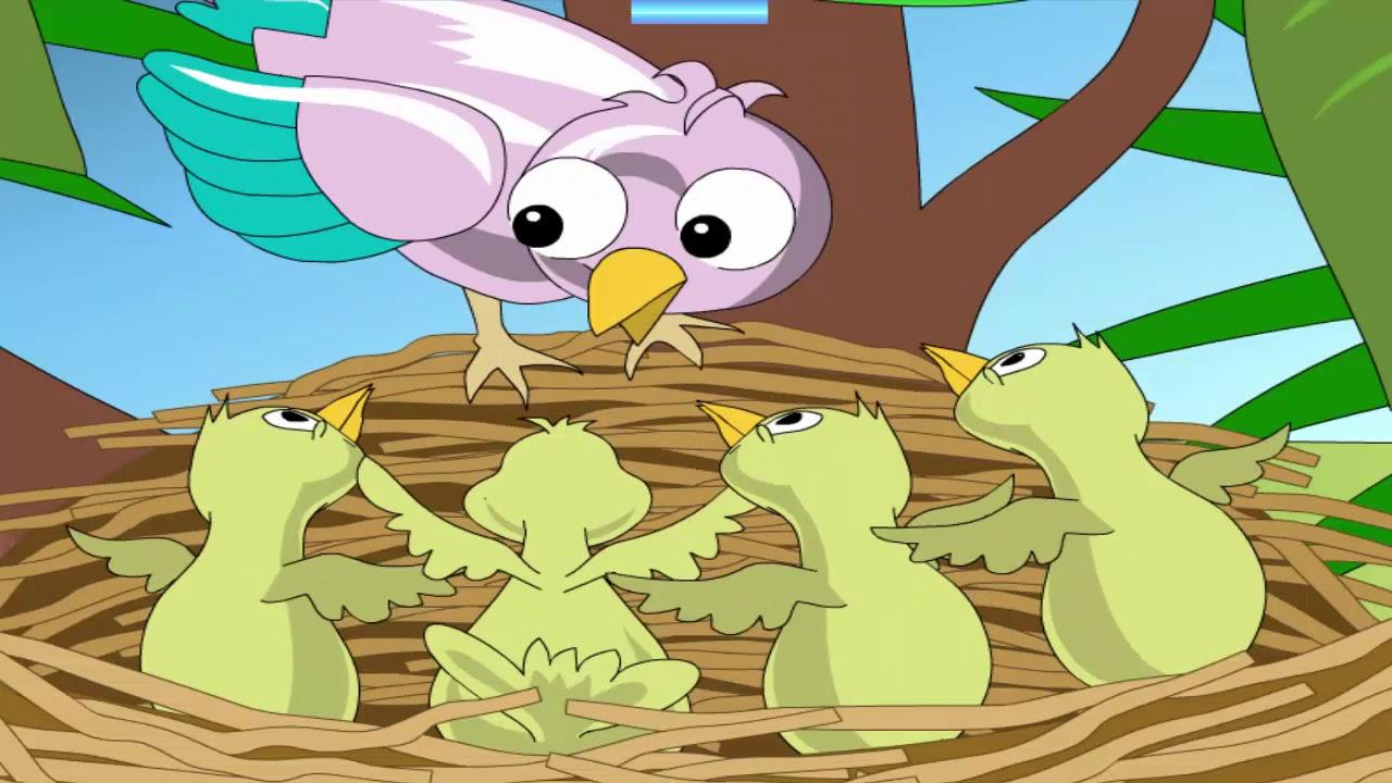 كرتون عصافير
