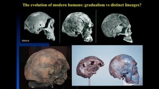 CARTA: The Origin of Us - Fossils of Modern Humans Interbreeding within and outside of Africa