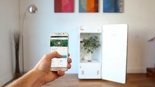 Introducing LEAF - The Plug-N'-Plant Grow System Video