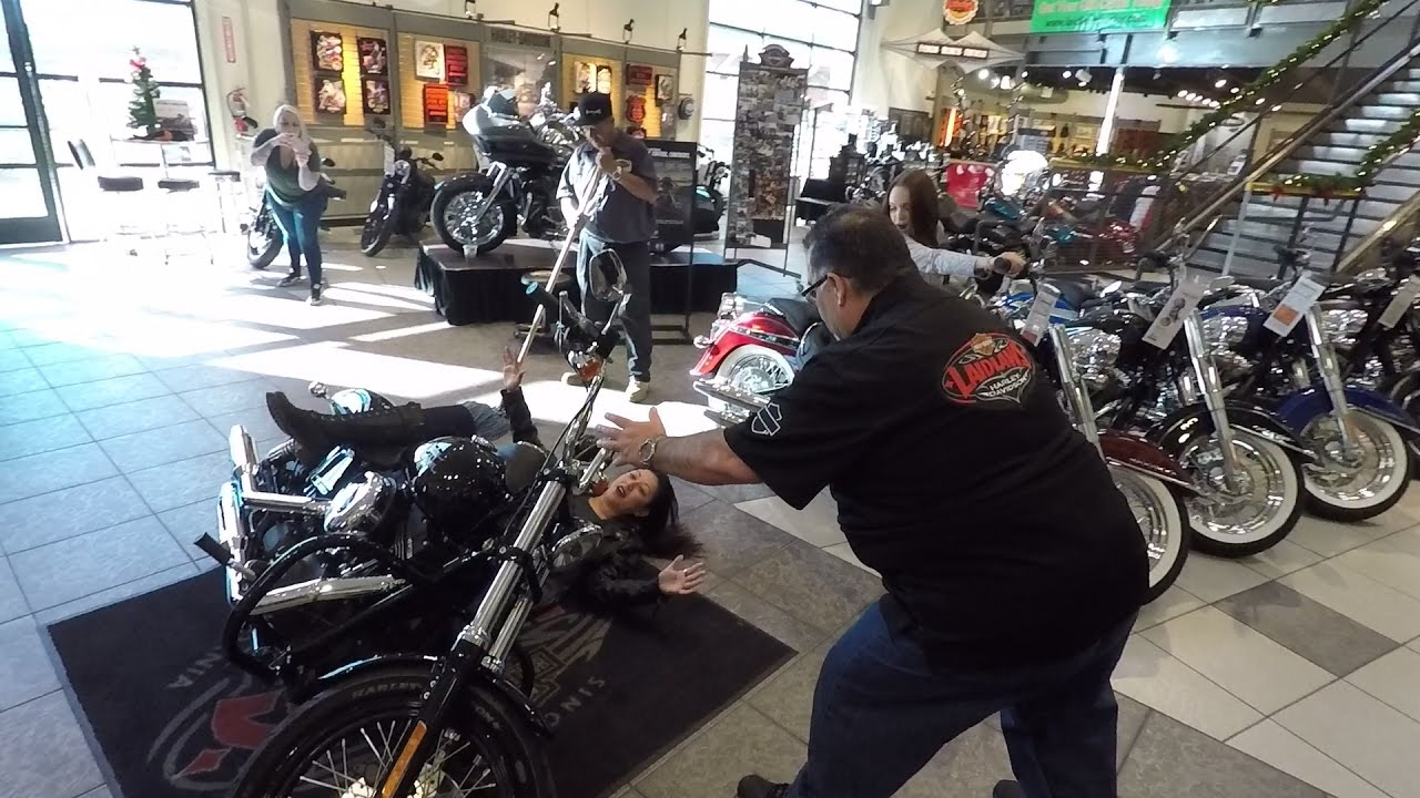 Mannequin Challenge Harley-Davidson Style │Laidlaw's Harley ...