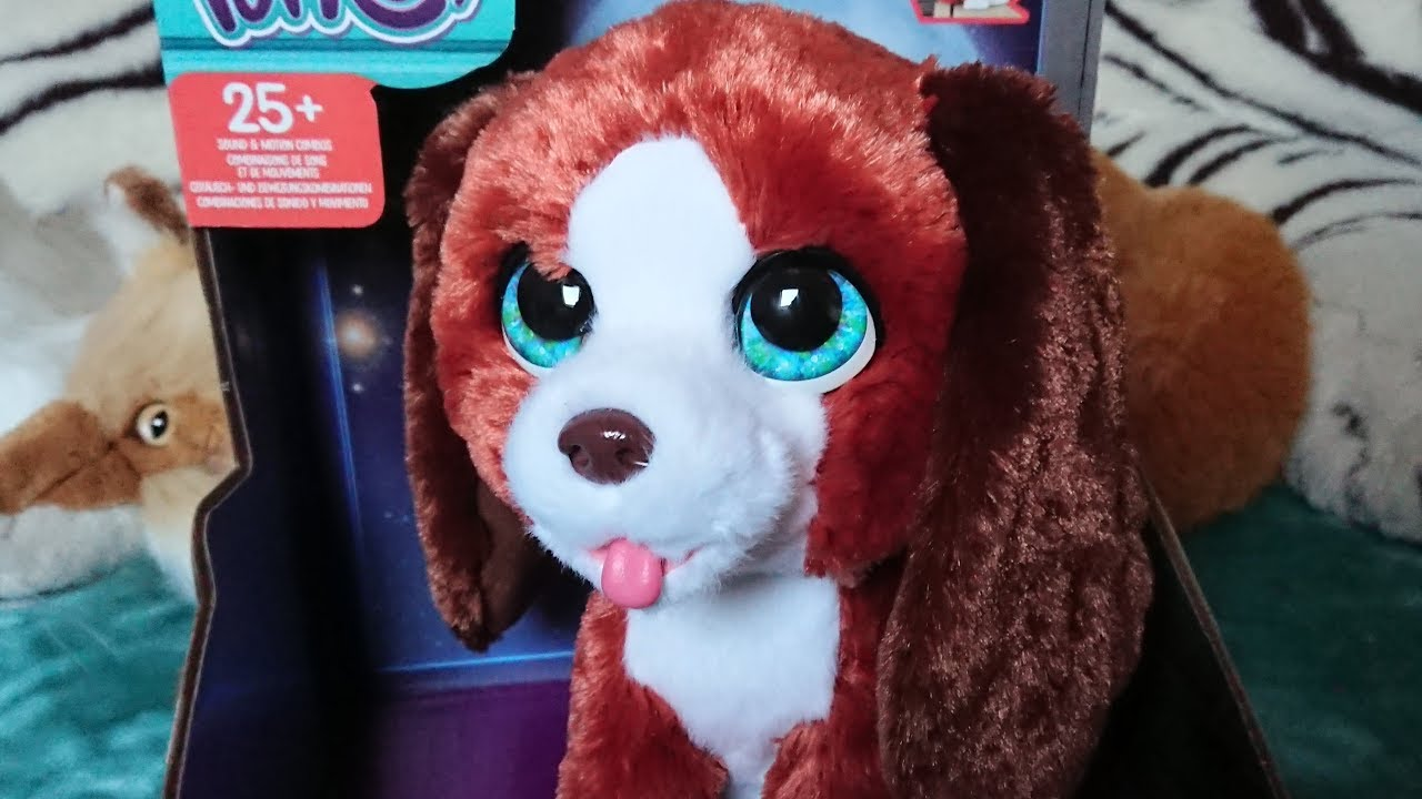 4 ans Fur Real Friends Cubby le curieux ours interactive plush toy