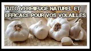 TUTO : Comment faire un vermifuge simple, naturel et efficace !