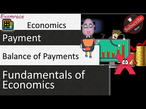 Balance of Payments: Fundamentals of Economics