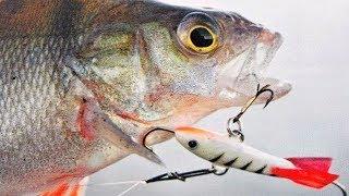 Товары для РЫБАЛКИ с Aliexpress 20 крутых вещей для Зимней рыбалки + КОНКУРС