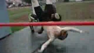 Amateur Pro Wrestling Tribute