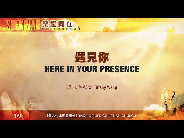 yu-jian-ni-here-in-your-presence-sheng-ming-he-jing-bai-zan-mei-xi-lie-8shekinah-rong-yao-tong-zai-x