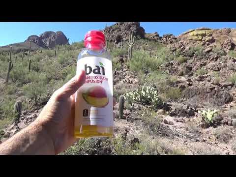 Daily Vlogs Hiking The Sanctuary Cove In Tucson Arizona