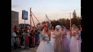 Парад Невест 2016 с. Варна. Прибытие невест к главной сцене.