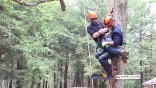 Advanced Tree Care - Arboriculture Canada Skills Training
