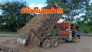 รถอีแต๋นบรรทุกมันสำปะหลัง ยุในไร่ต้องดันออก หลังถนนควันดำ E-Tan thai land
