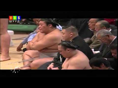 sumo 2016 1 3 1