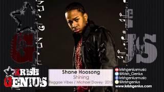 Shane Hoosong - Shining [Reggae Vibes Riddim] November 2015