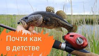 Рыбалка почти как в детстве На озере с удочкой Ловля ротанов и гольянов