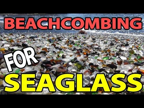 Beachcombing For Seaglass (140)