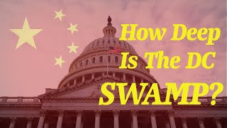 How Deep Is The DC Swamp?