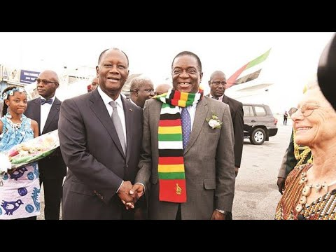 Zim's envoy to Senegal quits MDC – Nehanda Radio