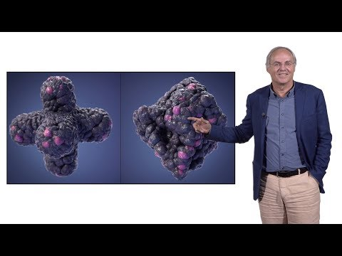 Hans Clevers (Hubrecht I., UU) 3: Organoid Technology For Disease Modeling
