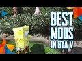 TOP 5 Best Mods in GTA V - PC Video Games (2018)