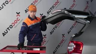 Kuinka vaihtaa rekisterikilven valon polttimo VW PASSAT B6 -merkkiseen autoon [OHJEVIDEO]