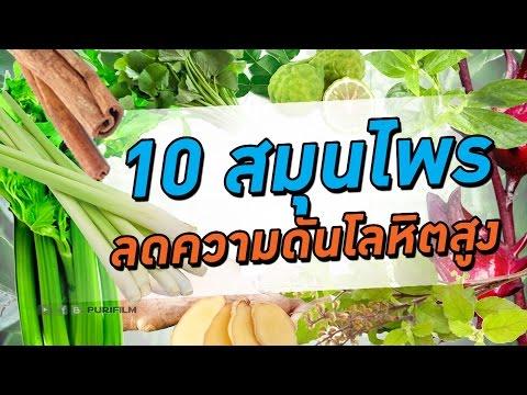 10 สมุนไพรลดความดันโลหิตสูง พืชมหัศจรรย์ช่วยรักษาโรค | PURIFILM Channel