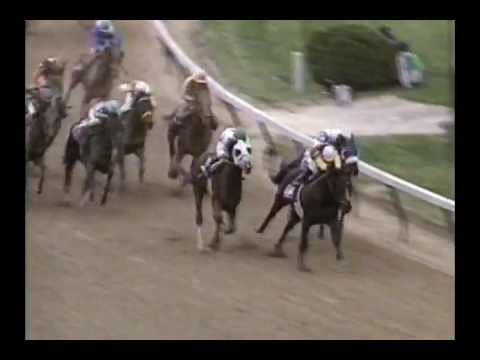 1994 Breeders' Cup Classic - Concern + Post Race