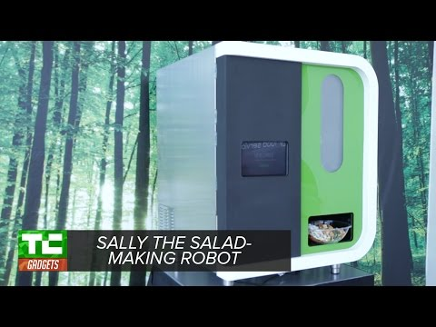 Sally the salad-making robot