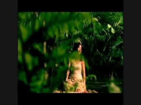 Björk - Alarm Call (Album Version Video Edit)