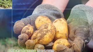 산청 지성농촌체험마을 홍보영상