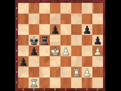 Chess: Susan Polgar 2430 - Florin Gheorghiu 2515, King's Indian  http://sunday.b1u.org